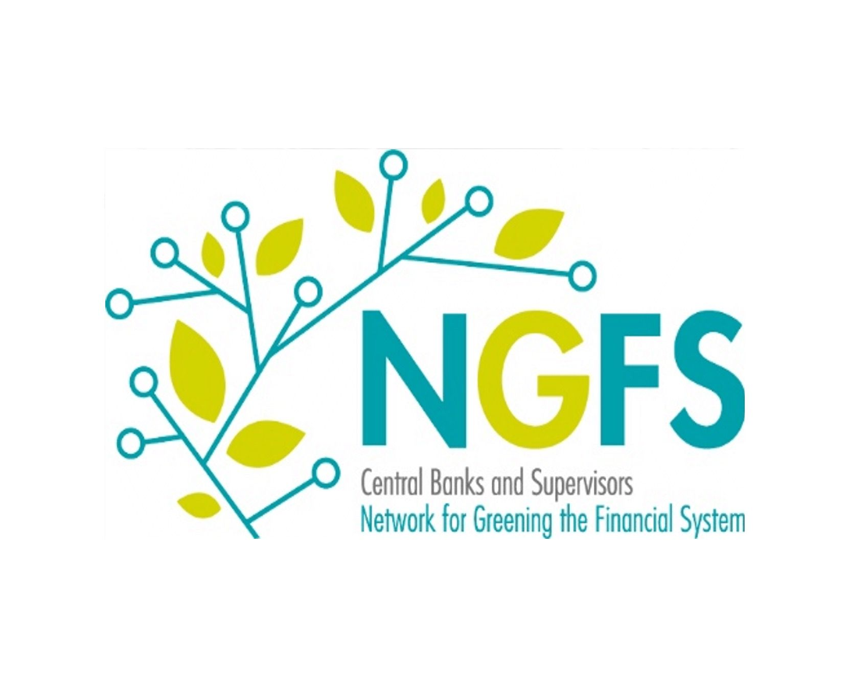 The DFSA joins Network for Greening the Financial System